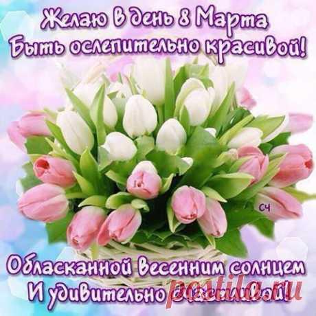 Поздравления с 8 марта в стихах, прозе и смс - tochka.net