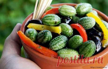 Посадите огурец арбузный - вкуснятинка с огорода