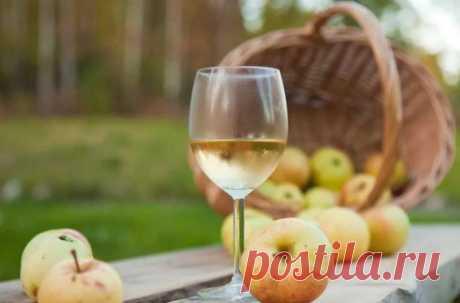 Как сделать домашнее вино из самых обычных яблок - простой рецепт вкусного напитка | Рекомендательная система Пульс Mail.ru