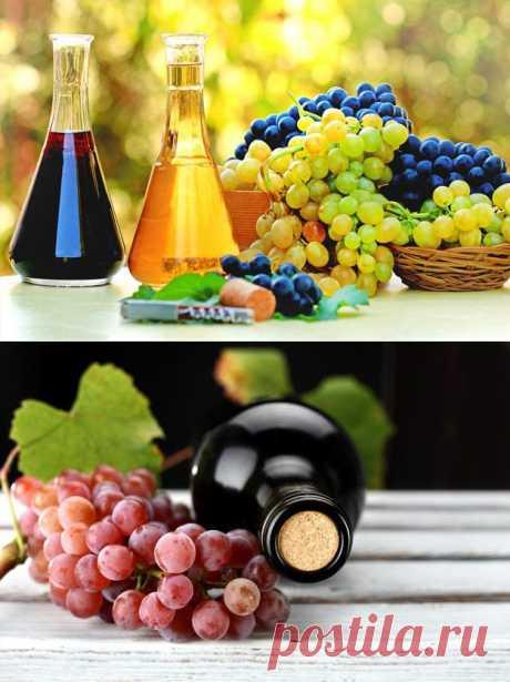 Шесть советов, как приготовить вино у себя дома | ДОМАШНИЙ ОЧАГ