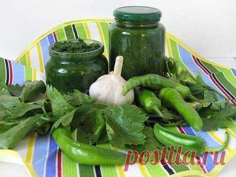 Зеленая аджика пальчики оближешь на зиму рецепт с фото - 1000.menu