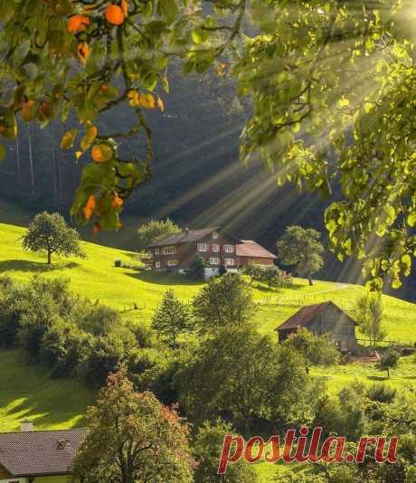 Switzerland 😍❤💚