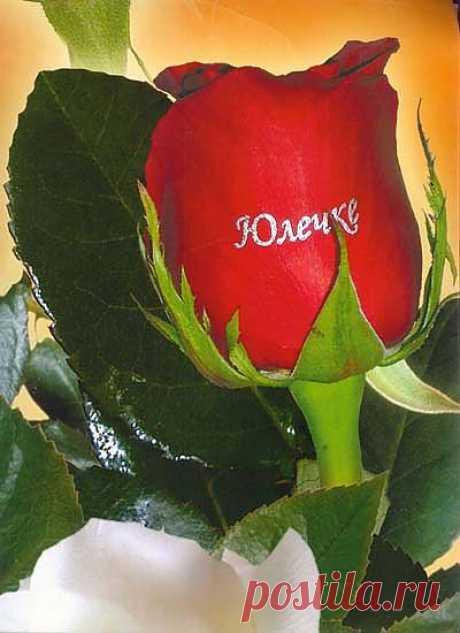 Надписи на цветах Флористический фломастер.   Сейчас в наличии  имеются Арт-фломастеры  двух цветов – Золотого и Серебристого. Особенным спросом  он пользуется у молодёжи  которая  постоянно  в  поиске  креативных идей  чтобы удивить один одного.  Например, идёте на День Рождения и на цветке надпись «С Днём Рождения». Цветок как бы говорит сам за себя.   Или если молодой человек не знает как развить отношения с любимой девушкой дальше, он дарит ей розу с надписью «Я тебя люблю». И роза сам
