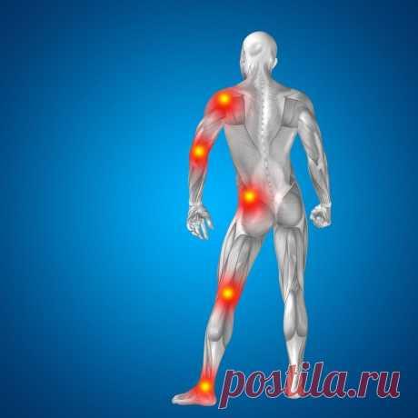 Полезные продукты для здоровых суставов Боли в суставах — это не только признак возрастных изменений в организме. Повредить сустав можно, например, в результате травмы. Какие средства помогут вам при болях в суставах и что полезно включить в пищевой протокол, чтоб ослабить воспаление, укрепить костную ткань и улучшить самочувствие.