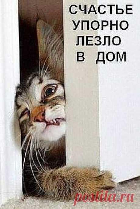 верить не смотря ни на что)