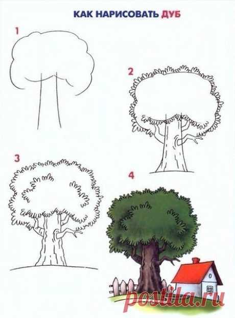 Как рисовать деревья поэтапно