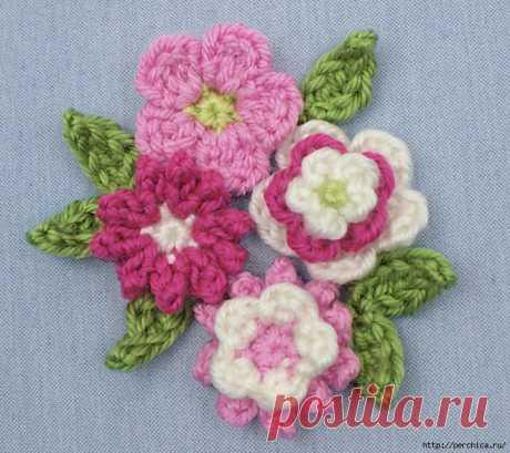 Las Clases maestras y los esquemas mini de las florecitas vinculado por el gancho