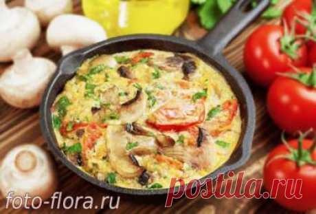 Омлет с помидорами и грибами: рецепт лучший