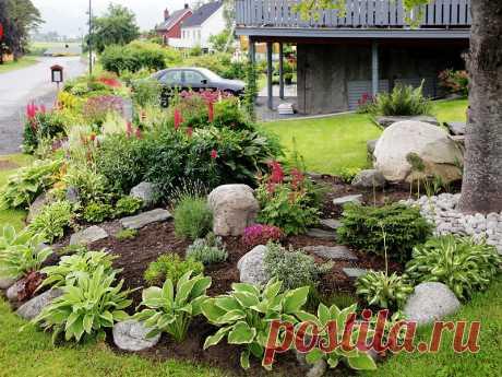 Дача «для ленивых»: 10 растений, за которыми не нужно ухаживать | 6 соток