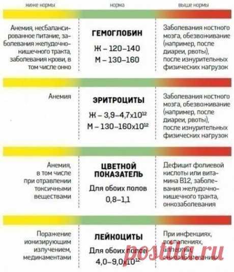 О чём расскажет анализ крови - инфографика