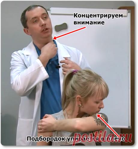 Урок + 5 упражнений | doctorshishonin.ru