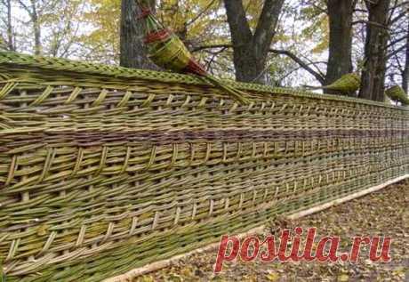 Плетень для дачи своими руками: традиции и современный дизайн — Учимся Делать Все Сами