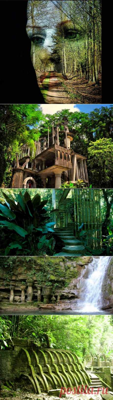 (+1) - Затерянные в джунглях...   УДИВИТЕЛЬНОЕ