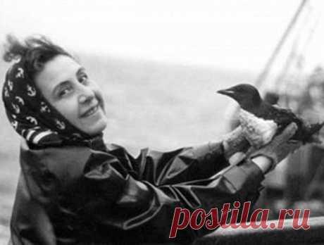 Анита Конти (Анита Карагошян) (1899 – 1997 гг.).  Несмотря на то, что у Армении нет выхода в океан, армянка по национальности Анита Конти занимала передовое место в области океановедения. Да, вы угадали, она была первой в мире женщиной-океанологом. Природовед, фотограф из Франции Анита Конти, она же Анита Карагошян.  В 1939 году Анита на три месяца отправляется в Арктику вместе с рыболовным судном «Викинг», которое занималось ловлей трески.