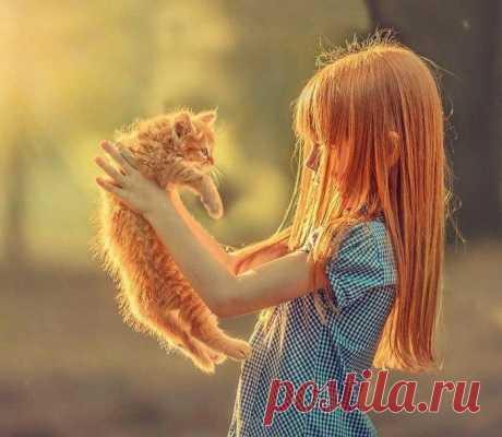 Когда ты с котиком одной масти