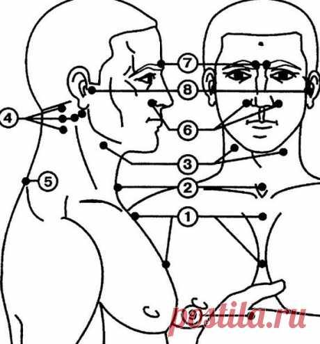 Точечный массаж для повышения иммунитета Точечный массаж для повышения иммунитета Массажные зоны, связанные с регуляцией иммунитета и закаливанием организма, изображены на рисунке. Всего таких точек девять.  Массаж биологически активных точек отлично помогает...