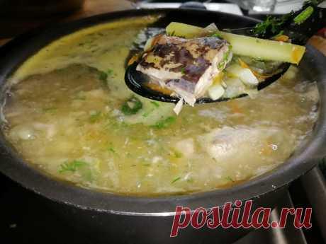 Простой, быстрый и дешевый суп, который накормит всю семью. Цена вопроса 50 рублей и 10 минут времени   Кулинарный техникум   Яндекс Дзен