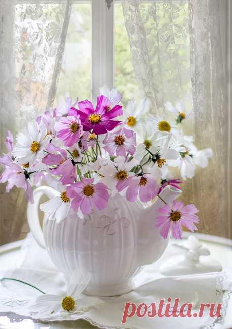 ═════════ஜ۩۞۩ஜ═════════ Жизнь состоит из маленьких мгновений, Простых и восхитительных явлений, Из множества случайных совпадений , Из тысячи простых и вещих фраз..