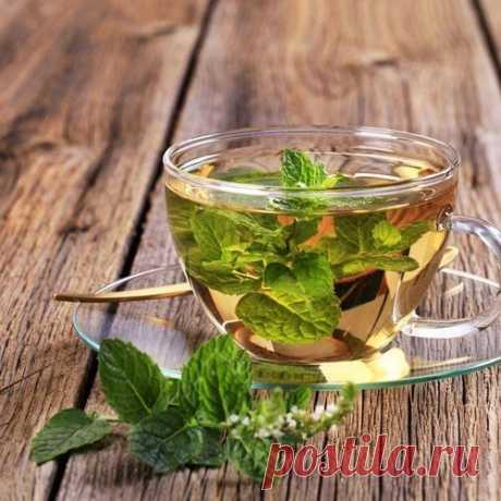 Марокканский мятный чай с корицей Мятный чай – это универсальный напиток. Его можно пить как холодным, так и горячим. Утром он придает бодрости, в обед прибавит сил и поможет с пищеварением