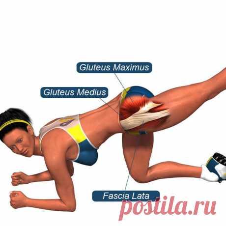 Простые упражнения для красивых ягодиц Упражнение 1. ПриседанияЭто очень просто, но выполнять его нужно правильно. Приседайте не до конца, а так, чтобы бедро и голень были под углом 90°, как если бы вы садились на невысокий стульчик.Спина ...