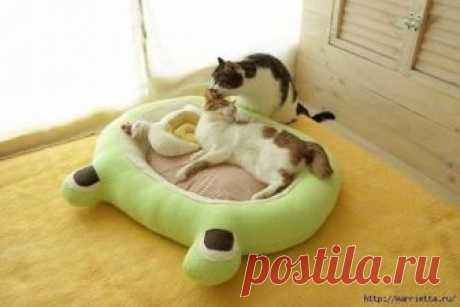 Уютная кроватка для любой кошечки.
