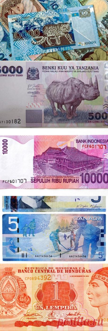 Британцы назвали тенге самой красивой валютой мира - Новости Казахстана