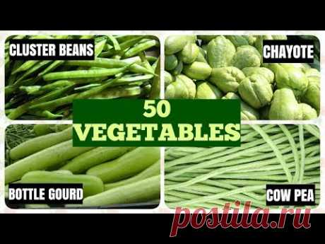50 Vegetable Names in English
