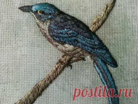 Мастер-класс смотреть онлайн: Авторская вышивка объемной птицы гладью «Лесная красавица» | Журнал Ярмарки Мастеров