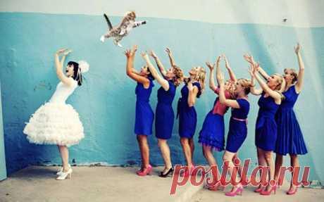 Последняя тенденция в свадебной моде! Вместо букета невесты — кошка!
