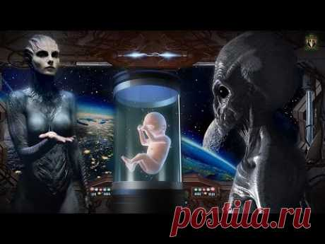 НЛО. Генетики с далеких планет - YouTube