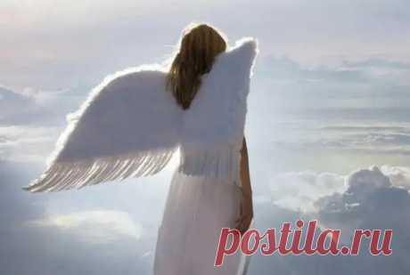 Ангел-хранитель каждого знака зодиака - Сонники, гороскопы, гадания - медиаплатформа МирТесен