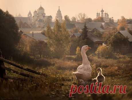 15 деревушек как из сказки, которые существуют на самом деле! Суздаль, Россия.
