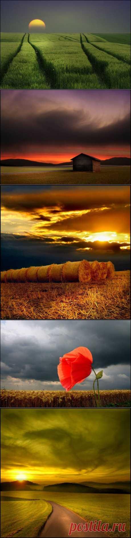 Красивейшие фотографии природы! (36 фото) » Загоны.ру - самый загонный сайт!