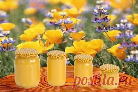 Как отличить настоящий мёд от ненастоящего?
