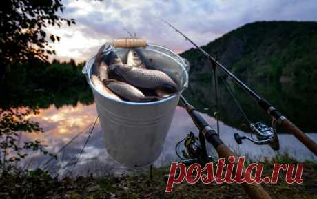 Одного червя хватит на всю рыбалку или китайцы удивляют