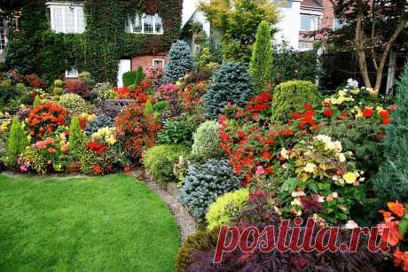 Миксбордер своими руками: схемы, подбор растений, фото - Домашние Советы Искусство ландшафтного дизайна предусматривает вариант, при котором любой дачный участок или садовая...
