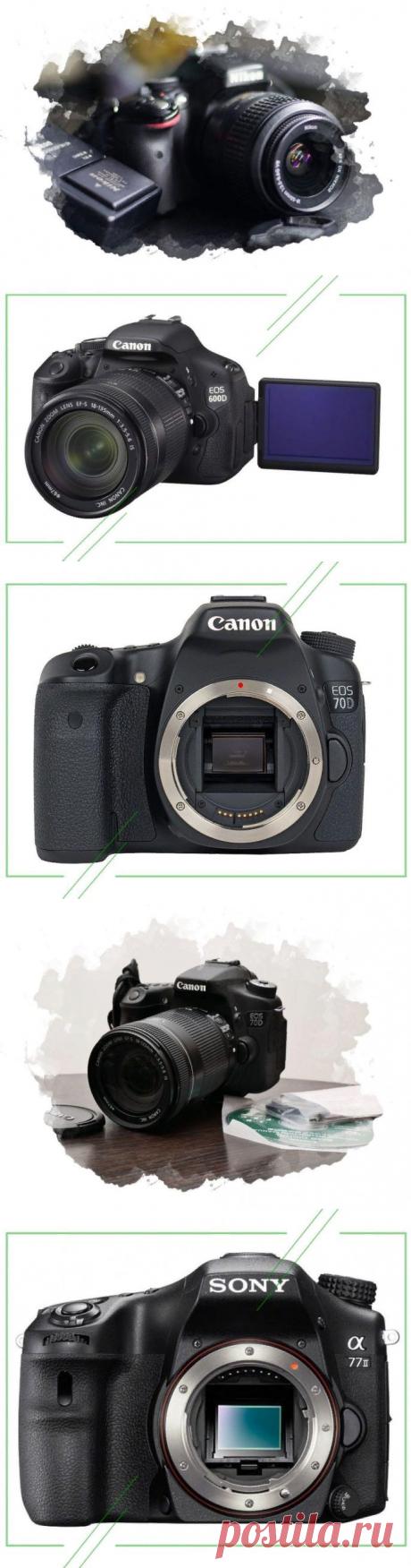 ТОП-7 лучших зеркальных фотоаппаратов