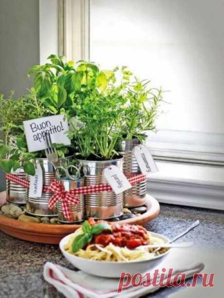 Красивый огород на кухне — Мой дом