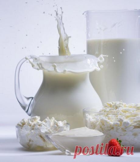 Dairy mushroom and its medicinal properties