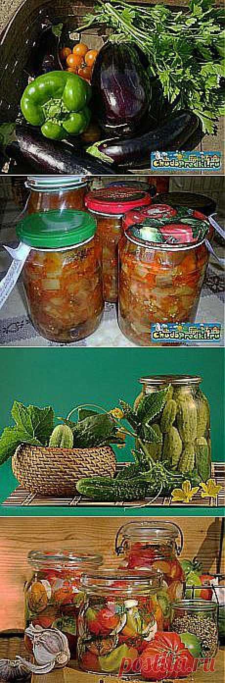 Ирина Яковенко: Блюда из овощей. Зелень. Заготовки. | Постила