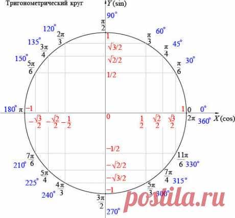 Как пользоваться единичной окружностью. Лайфхак ЕГЭ по математике | PRO | Математика | Яндекс Дзен