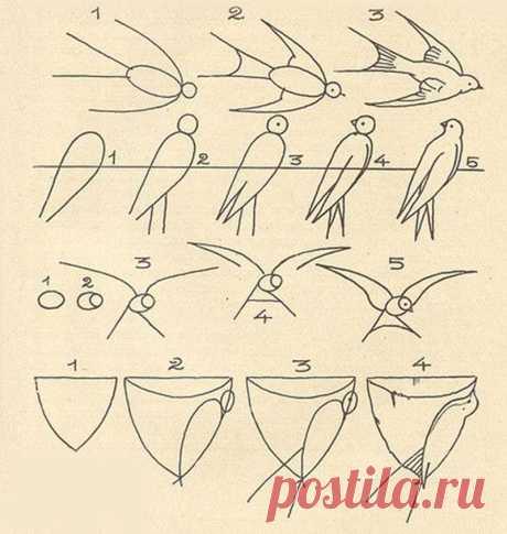 11 простых схем, которые помогут научить ребенка рисовать