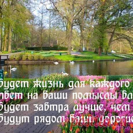 Photo by Ирина Сабитова on May 14, 2020. На изображении может находиться: дерево, на улице, природа и вода