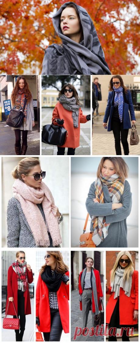 Как носить палантин с пальто, фото
