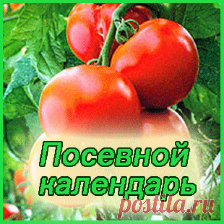 Посевной лунный календарь садовода, огородника на 2016 год для России (московское время) |