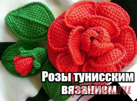 Розы тунисским вязанием — DIYIdeas