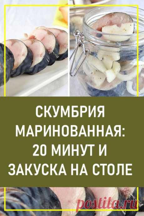 Скумбрия маринованная: 20 минут, и закуска на столе. Можно, конечно, купить в супермаркете готовую маринованную скумбрию. Но приготовленная дома — это восторг!
