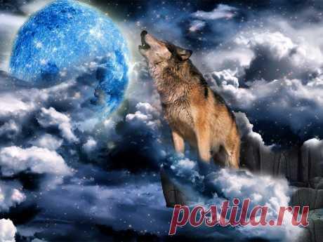 Wolf&Moon (5 фрагментов картинок для коллажа)