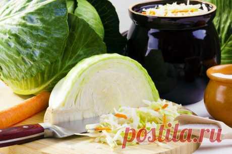 Самые вкусные и простые блюда из капусты: сейчас для них самое время | Мастерская идей | Яндекс Дзен