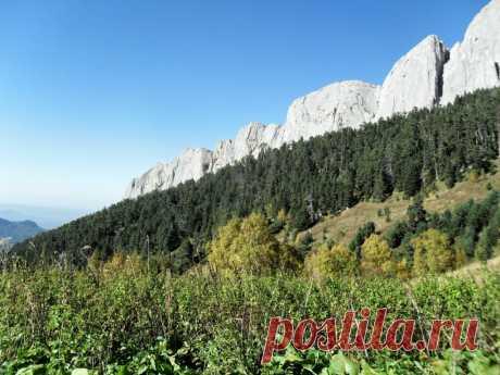 Скалы и леса у них - 2 Августа 2016 - Персональный сайт